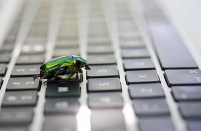 Bug Sweep Leeds